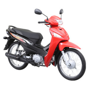 HONDA WAVE 110 ALPHA (Spoke)