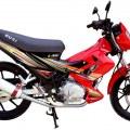 RUSI DL 150