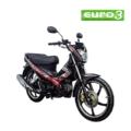 EUROMOTOR EURO SPORT R
